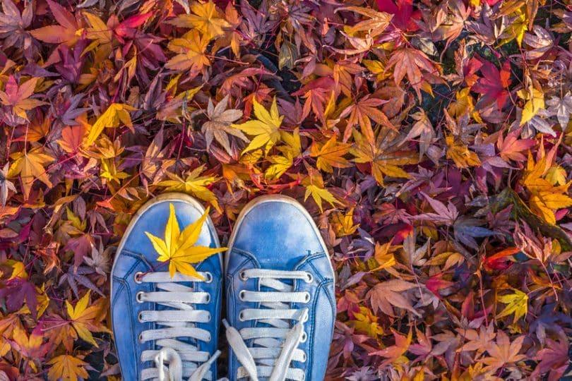 Pés vistos de cima em folhas de outono