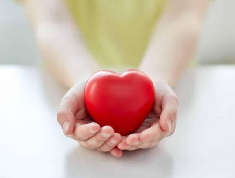 Pessoa segurando um coração em suas mãos.