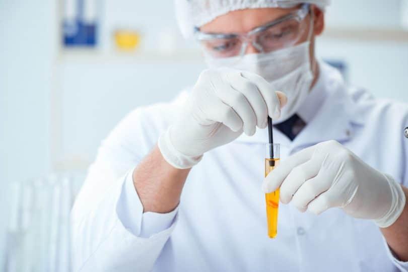 Médico realizando teste
