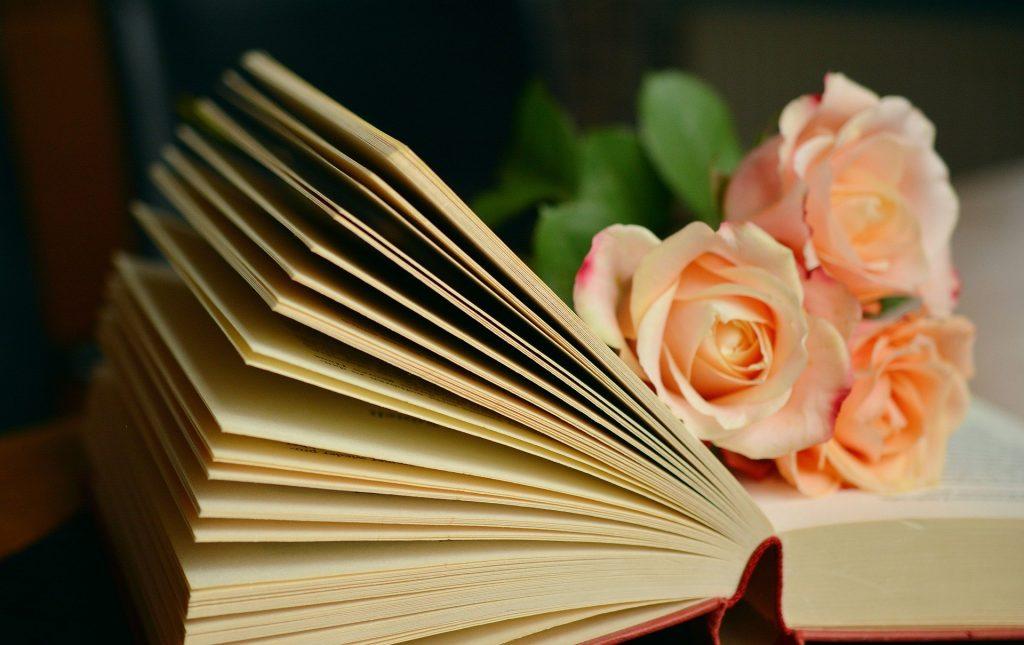 Imagem de um livro espírita aberto e sobre ele um ramalhete pequeno de rosas alaranjadas.