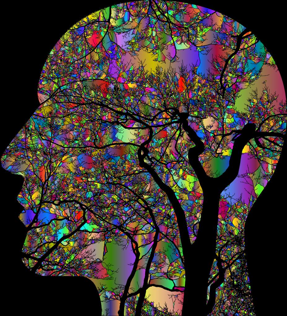 Imagem de uma mente humana e dentro dela muitas imagens e informações coloridas.