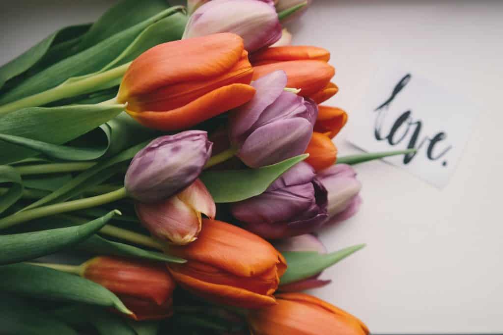Buquê de tulipas sobre uma mesa.