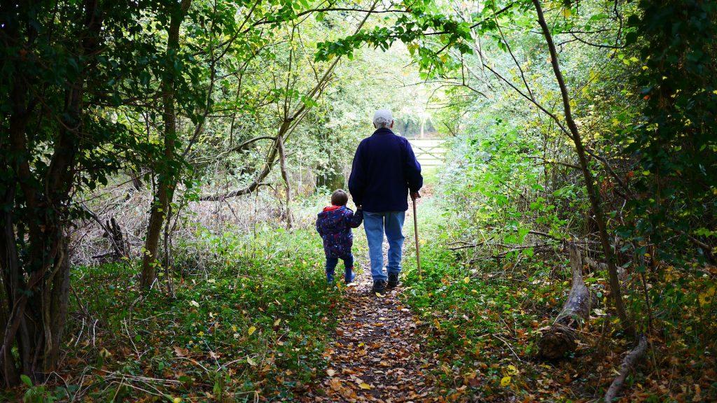Imagem de uma floresta e com um caminho ao centro. No caminho temos a figura do avó segurando na mão do seu neto pequeno.