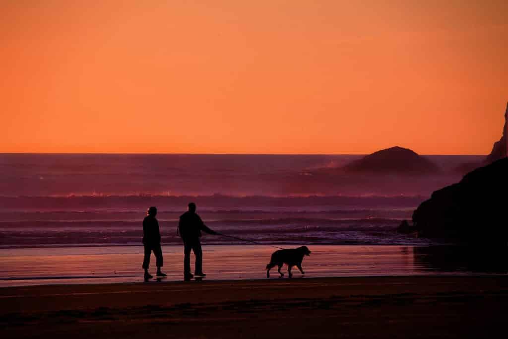 Imagem de um lindo por do sol no mar. Na areia da praia caminham juntos um casal de idosos e o seu cão guia.