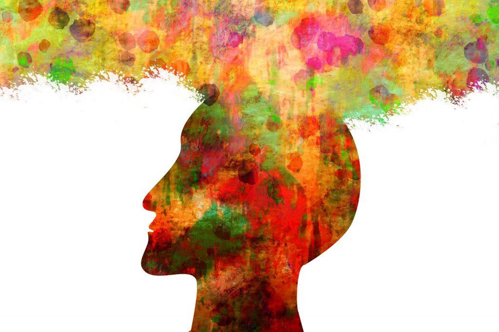 Imagem da cabeça de um humano bem colorida.