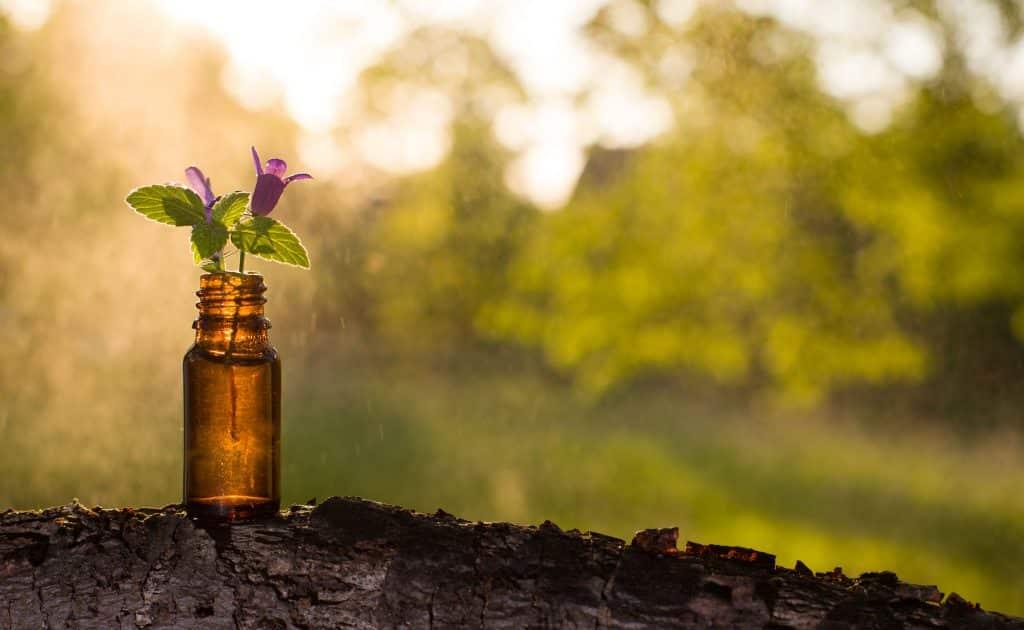 Vidrinho de floral com duas flores pequenas dentro.