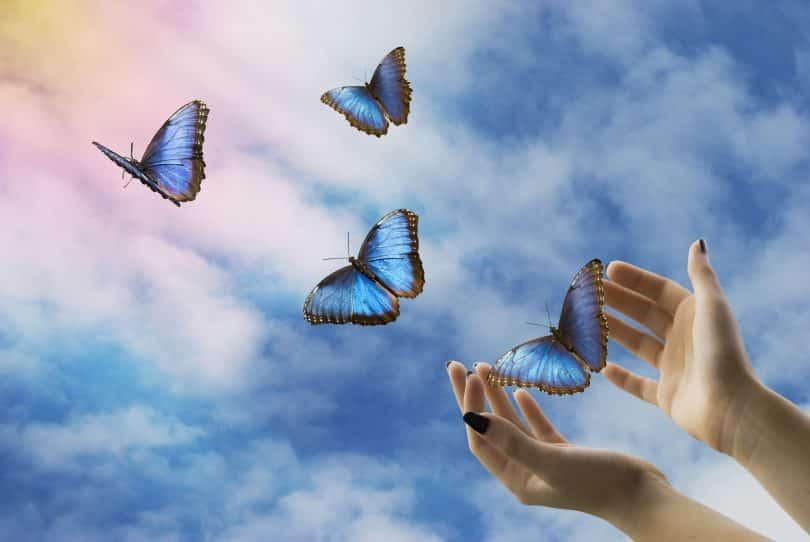 Mãos abertas libertando borboletas ao céu ensolarado.