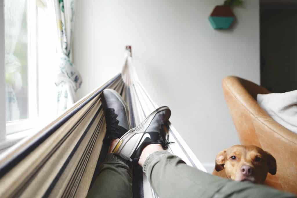 Homem deitado em uma rede com seu cachorro ao lado olhando
