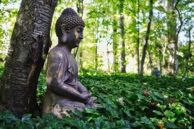 Estátua grande de Buda sentado em frente árvore e gramado em volta