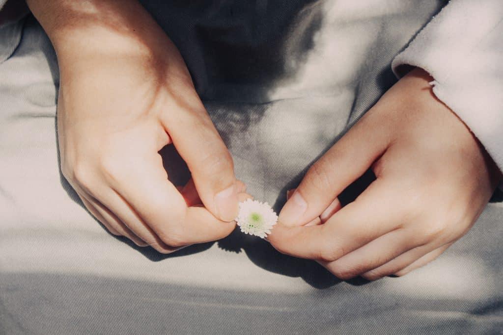 Pessoa segurando uma pequena flor entre as mãos.
