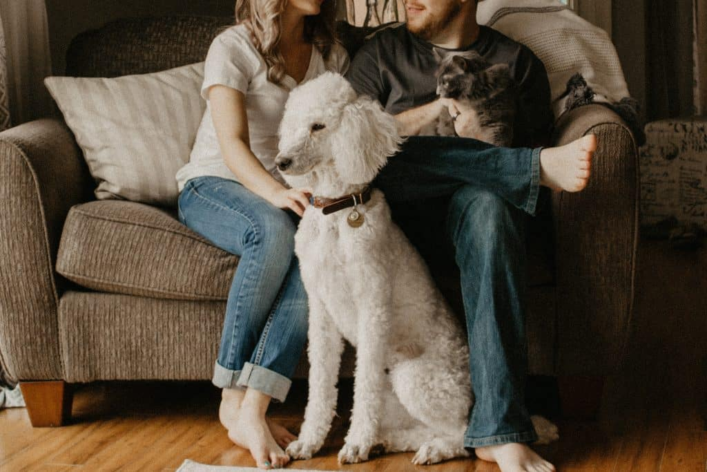 Família sentada no sofá da sala com cachorro em sua frente e um  gato no colo do homem