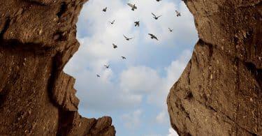 Silhueta de uma cabeça humana formada em uma rocha, com pássaros voando ao fundo.