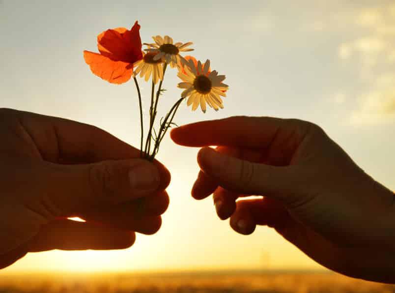 Silhueta de mãos uma entregando flores para outra com sol refletindo