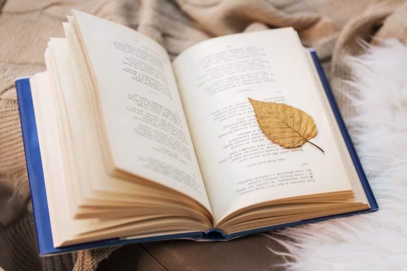 Livro de poesias sobre uma mesa de madeira, com uma folha caída sobre suas páginas.