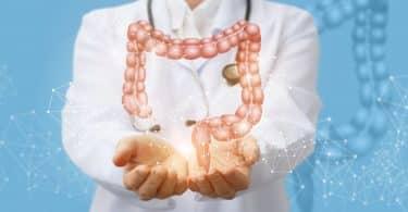 Doutora segurando ilustração de intestino