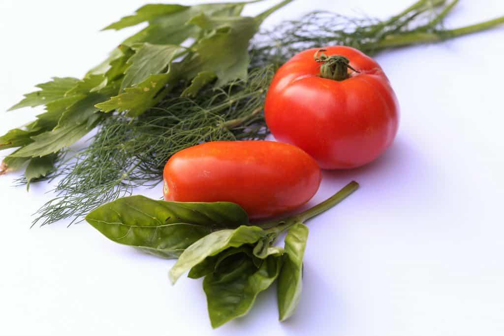 Imagem de receitas com alfavaca. Tomates e folhas de alfavaca para serem utilizados em temperos de diversos alimentos.