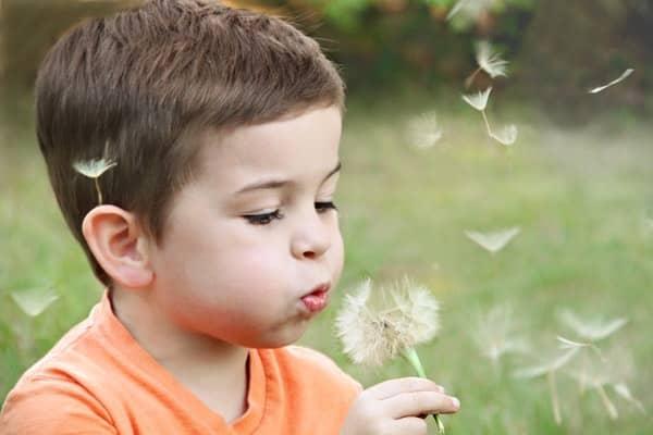 Garotinho assoprando flor dente-de-leão