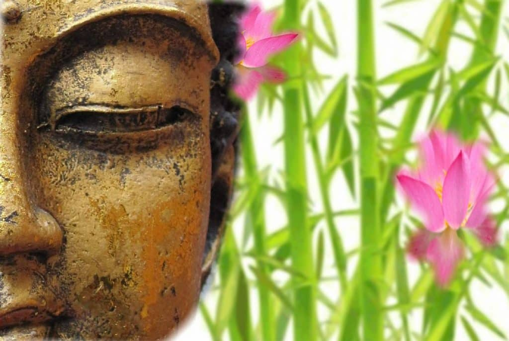 Imagem da estátua do rosto de Buda e ao lado flores na cor rosa. Ele está agradecendo e fazendo a oração do ho'oponopono.
