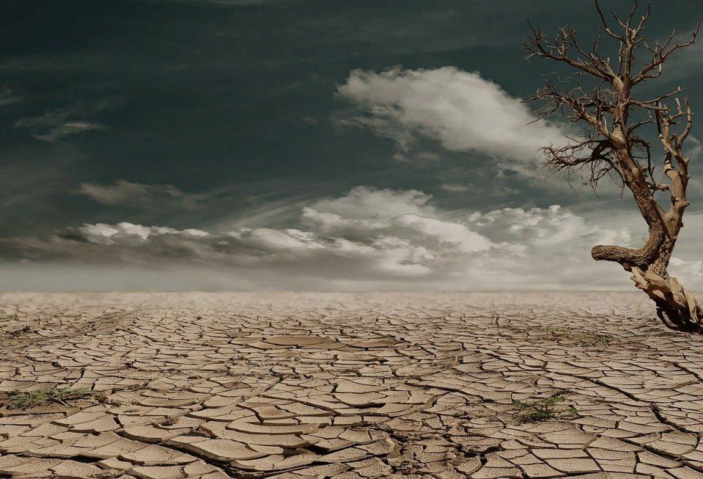 Solo deserto todo rachado, com uma árvore seca ao lado direito. O céu está azul escuro e com muitas nuvens.