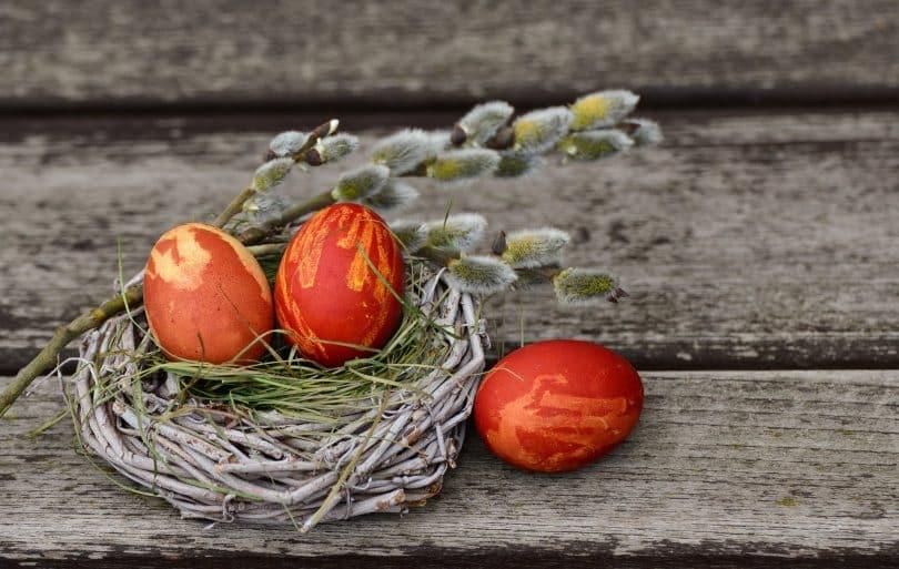 Imagem de um ninho com dois ovos pintados na cor vermelho dentro dele. O ninho representa o significado do símbolo da Páscoa.