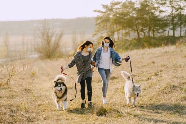Amigas passeando com seus cachorros em parque com máscaras nos rostos