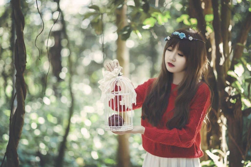 Imagem de uma jovem garota oriental de cabelos longos e com uma tiara azul florida sobre a cabeça. Ela está em uma floresta e segura em suas mãos uma gaiola pequena na cor branca decorada com fitas e dentro dela uma maçã.