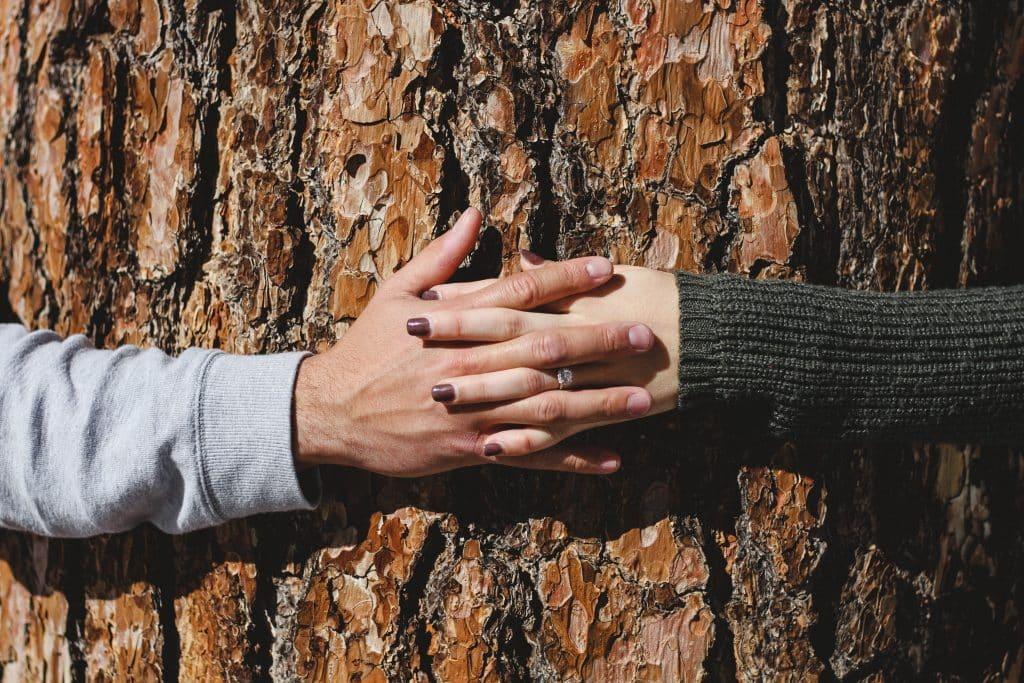 Homem e mulher de mãos dadas abraçando árvore