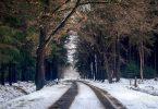 Estrada coberta de neve com passagem para carros