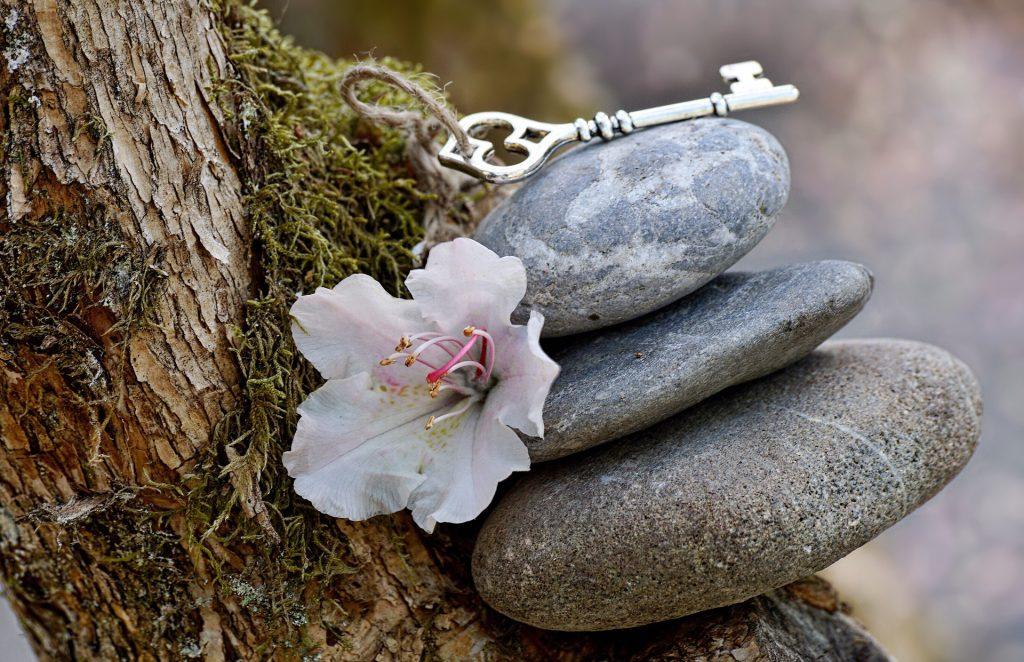 Imagem de três pedras sobrepostas em um tronco de uma árvore e ao lado uma linda flor branca representando a espiritualidade.