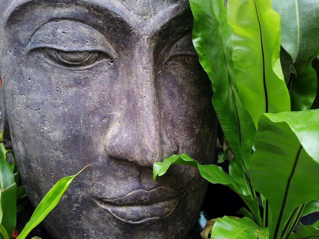 Imagem do rosto dp Buda e ao lado dele uma folhagem bem verdinha. Ele está fazendo a oração do ho'oponopono.