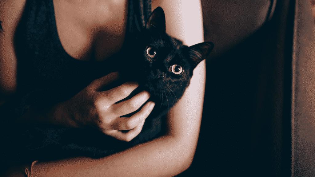 Gato preto no colo de uma mulher