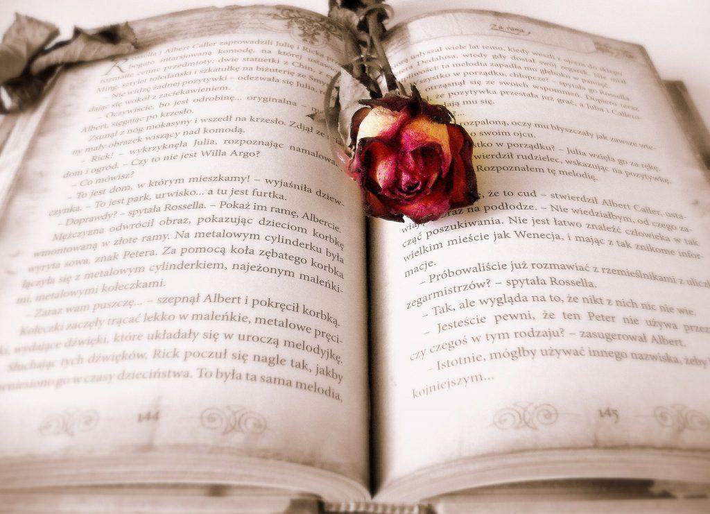 Imagem de um livro aberto e no meio dele uma rosa nas cores vermelho e amarelo.