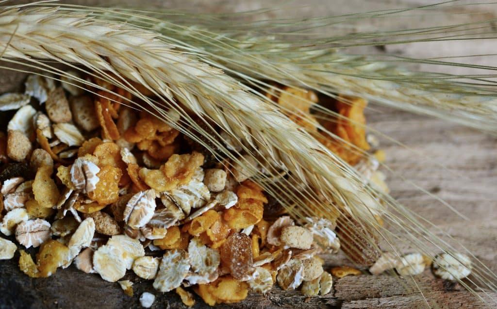 Imagem de vários cereais que foram selecionados para o preparo da barra de cereal.