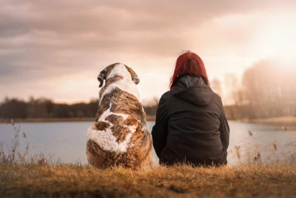 Imagem de uma mulher e o seu cão. Ambos estão de costas olhando para um lago. Eles são bons amigos.