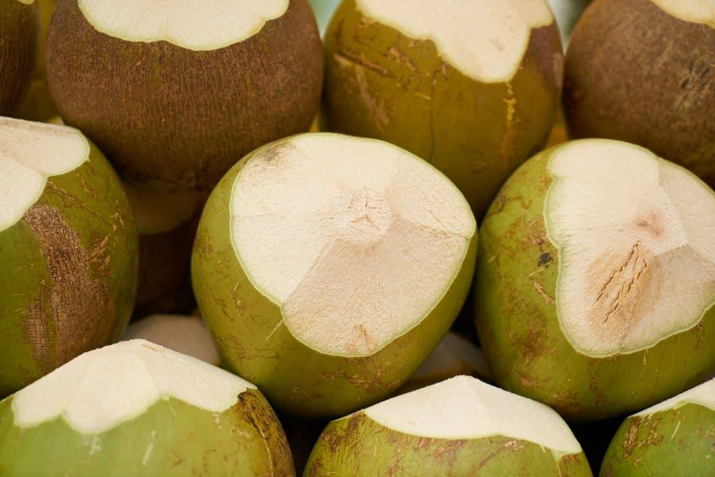 Vários cocos verdes que serão comercializados.