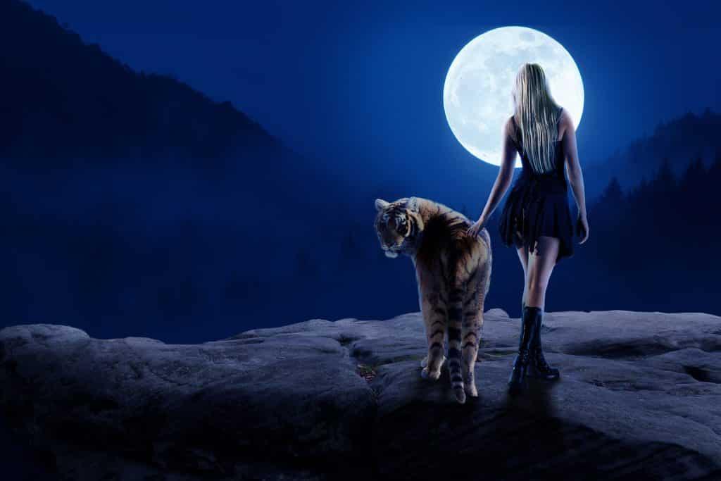 Imagem de uma pedra gigante e sobre ela um tigre e uma mulher lado a lado. Ao fundo a linda lua cheia.