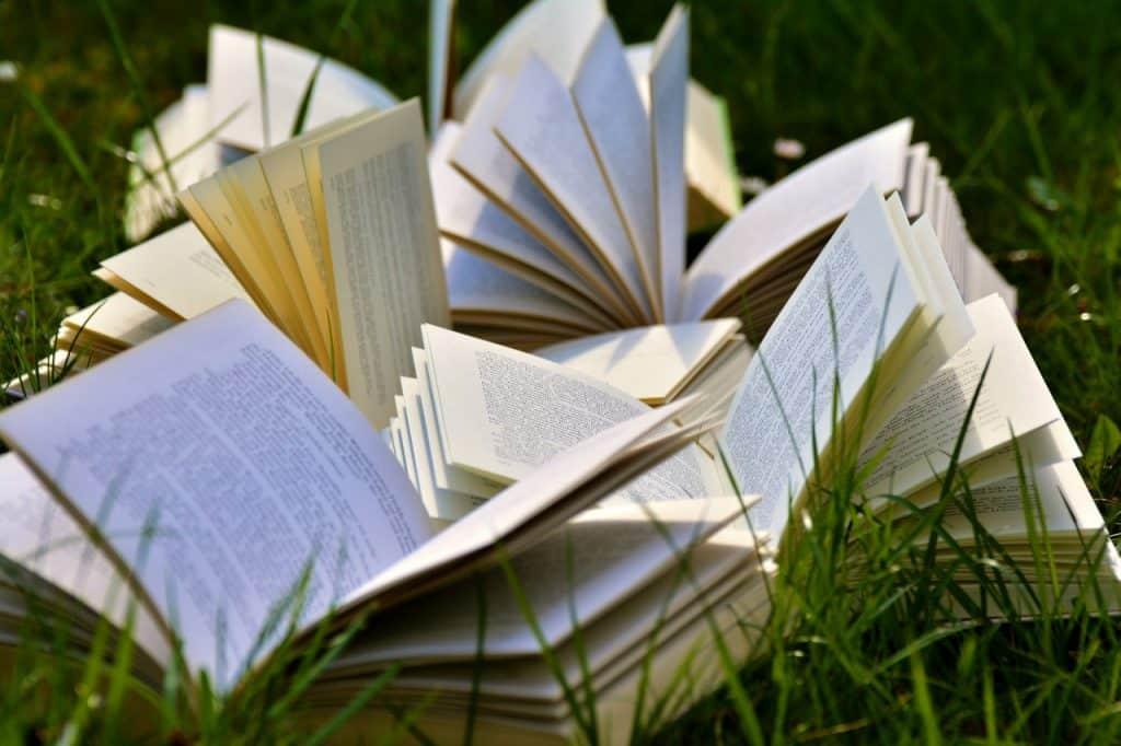 Livros abertos sobre um campo gramado, durante o dia.