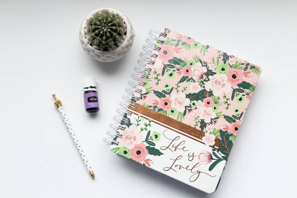 Imagem de uma agenda fechada e ao lado dela um lápis e um pequeno vaso com um cacto