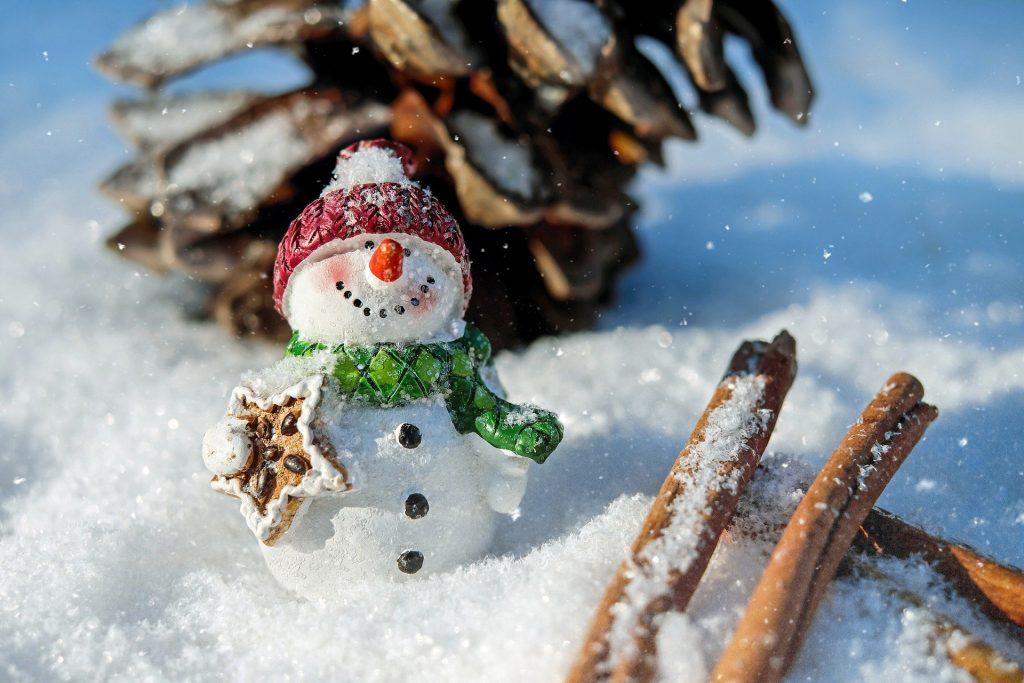 Imagem de um lindo e pequeno boneco de neve (na neve) ao lado um pinha e alguns pedaços de canela em pau.