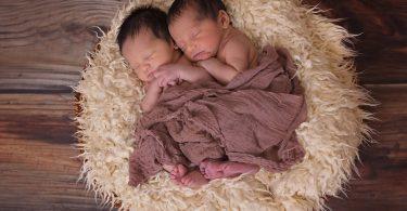 Imagem de dois bebês masculinos gêmeos recém nascidos deitados sobre um cesto forrado com uma manta de pelos. Eles estão cobertos com um tecido marrom.