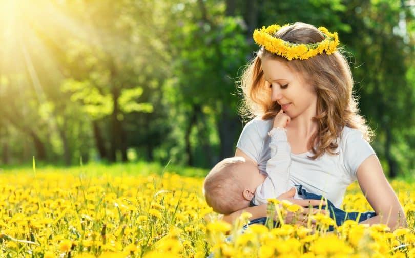 Imagem de um lindo campo florido com flores amarelas. Ao fundo uma mãe amamentando o seu filho.