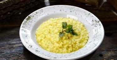 Imagem de um prato branco com risoto servido de cor amarela enfeitado com um broto verde.