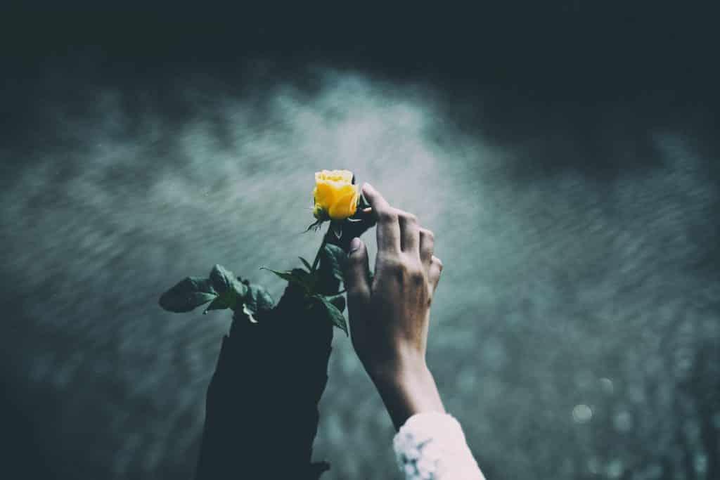 Mulher encostando em uma flor