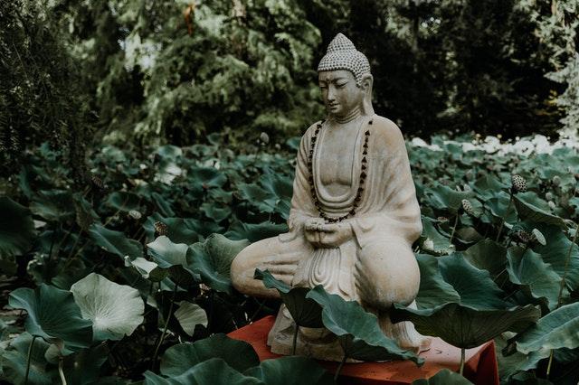 Imagem de Buda sentado entre folhas verdes