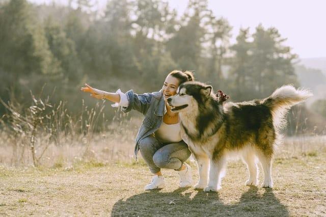 Mulher com cachorro em campo sorrindo e apontando