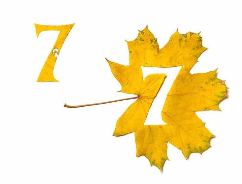 Número sete recortado de uma folha amarela.