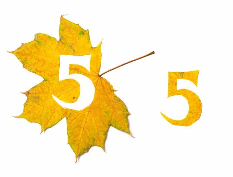 Número cinco recortado de uma folha amarela.