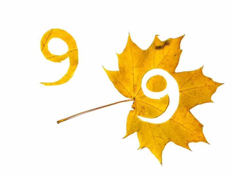 Número nove recortado de uma folha amarela.