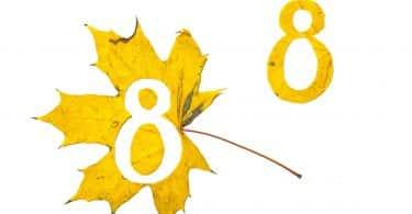 Número oito recortado de uma folha amarela.