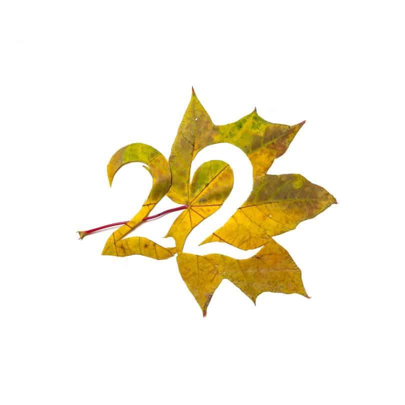 Número dois recortado de uma folha amarela.